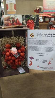 Vesuvio Piennolo Cherry Tomato