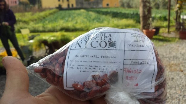 Lucca Red Bean