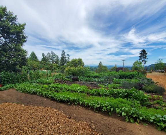 garden locc