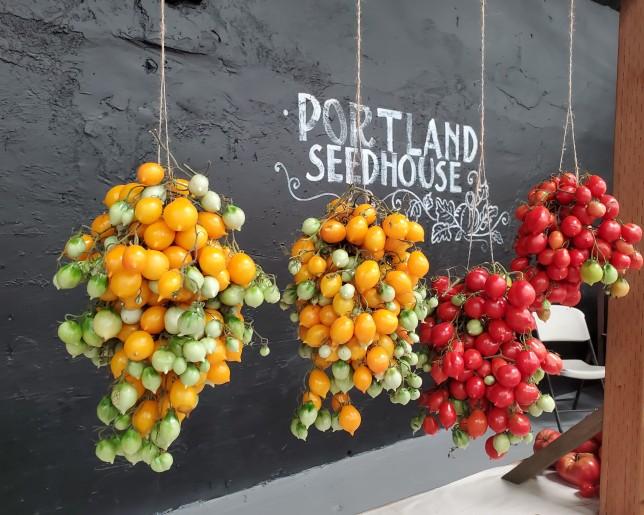 seedhouse expo